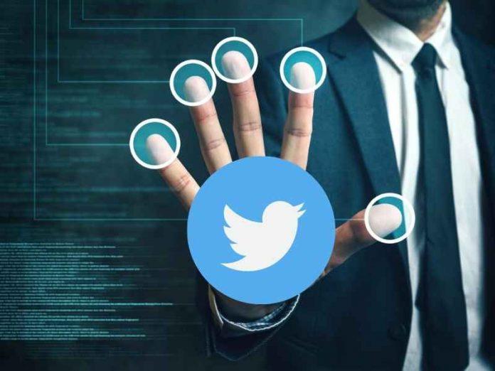 Twitter Profile Verification